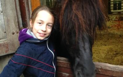 Wir gratulieren den neuen Pferdebesitzern und freuen uns mit Euch über Eure tollen Pferde!